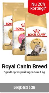 Royal Canin kat Breed kleinverpakkingen 20% korting