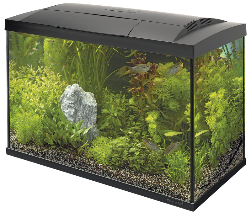 SuperFish aquarium Start 70 Tropical kit zwart