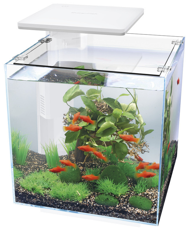SuperFish aquarium Qubiq 30 LED wit