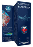 FLAGELLEX 100 ML 500 LTR (1).jpg
