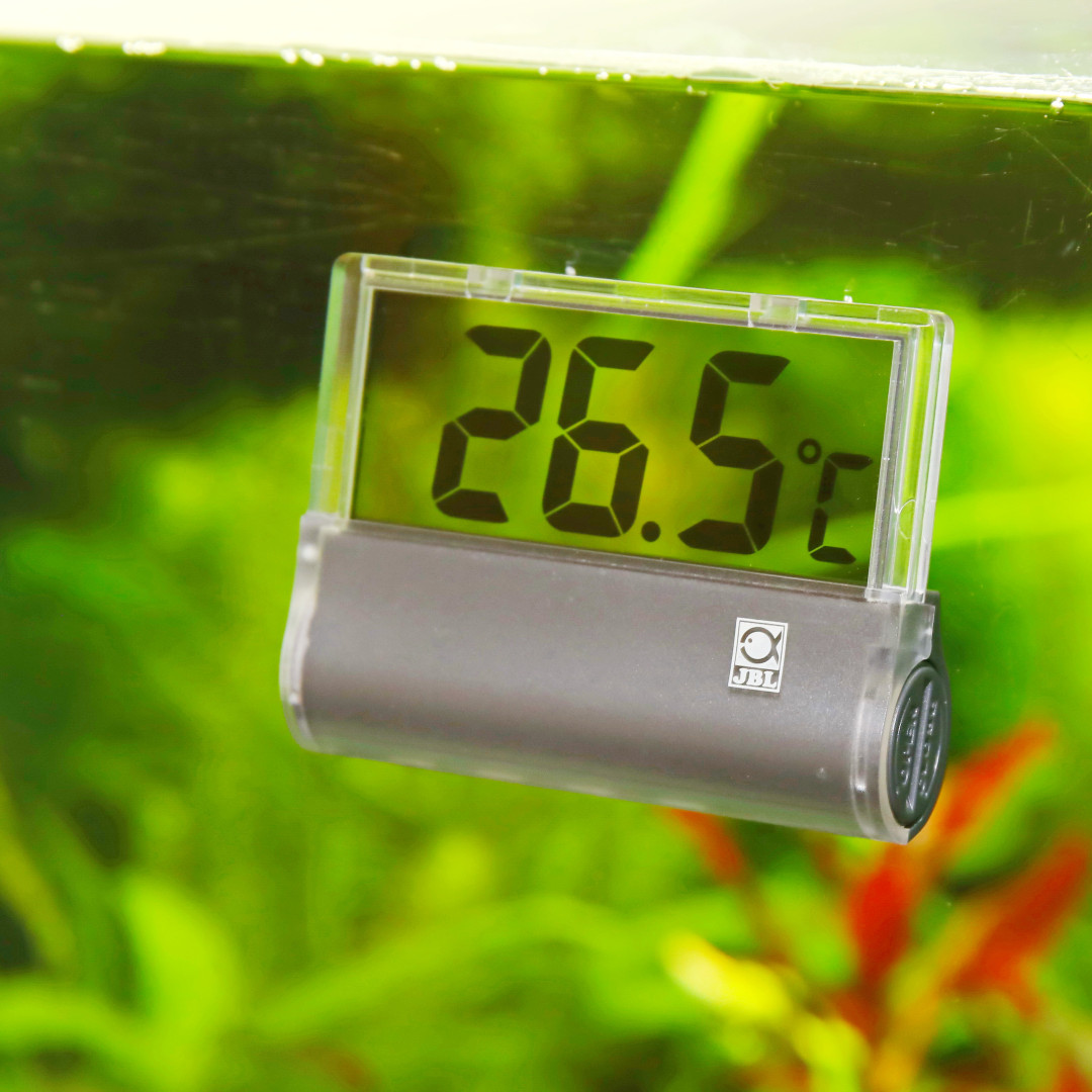 JBL thermometer DigiScan