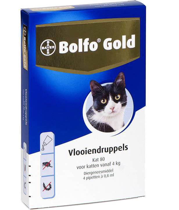 Bolfo Gold 80 kat <br>4 pipetten