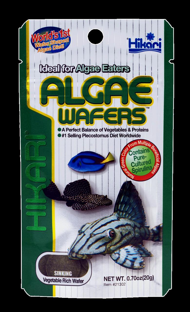 Hikari Algae Wafers <br>250 gr