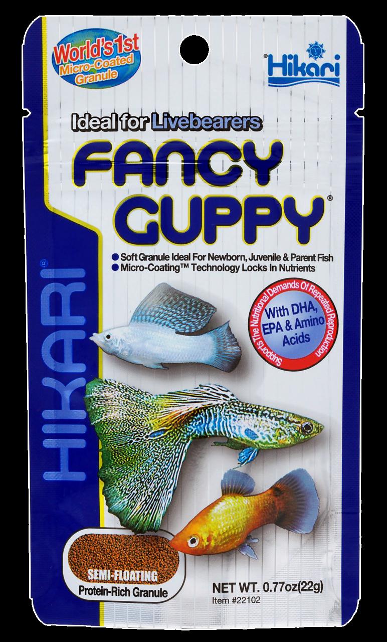 Hikari Fancy Guppy <br>22 gr