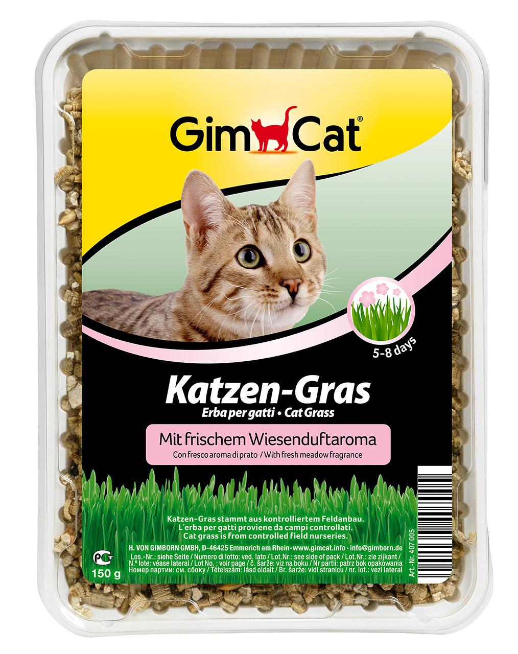 GimCat kattengras met weilandgeur 150 gr