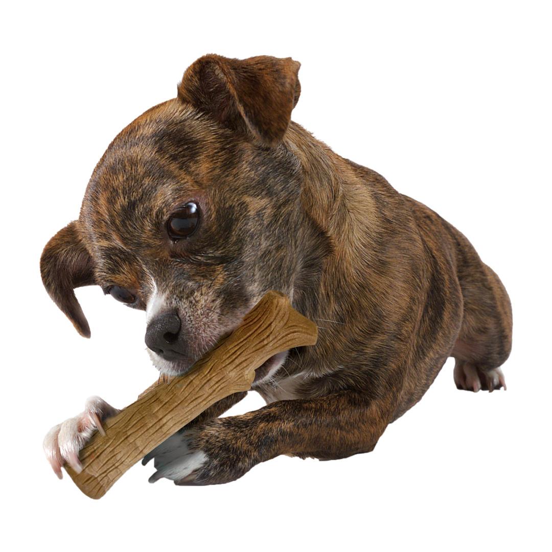 Petstages Durable Stick Petite