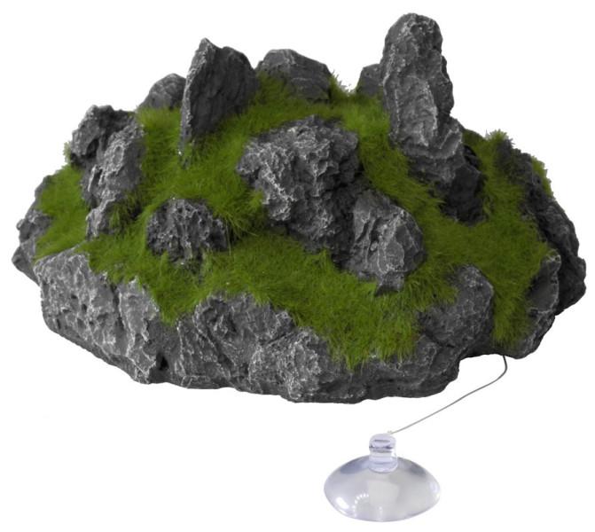 Aqua D'ella floating rock met zuignap L