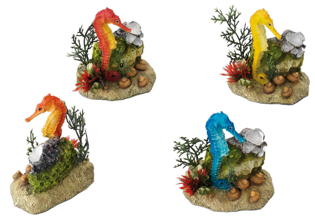 Aqua D'ella seahorse with plants