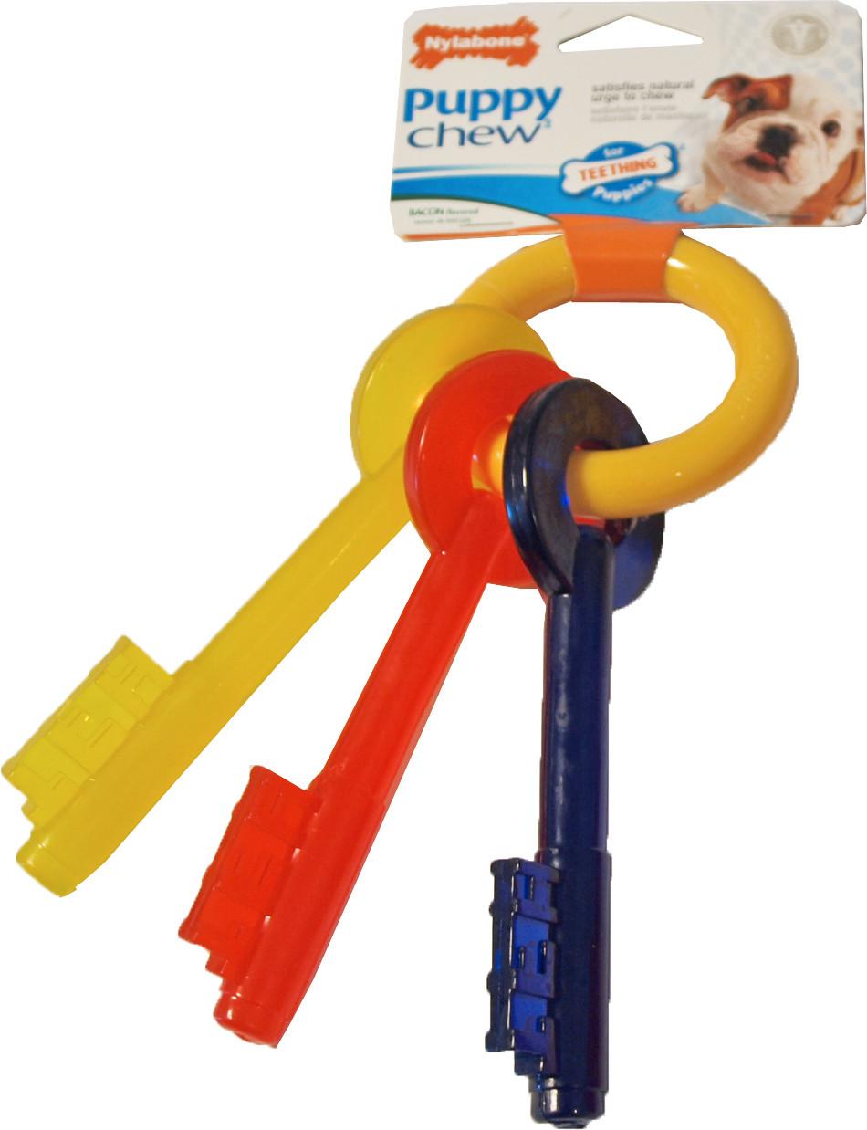 NylaBone Puppy Chew Teething Key S
