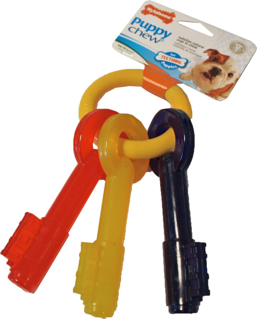NylaBone Puppy Chew Teething Key M