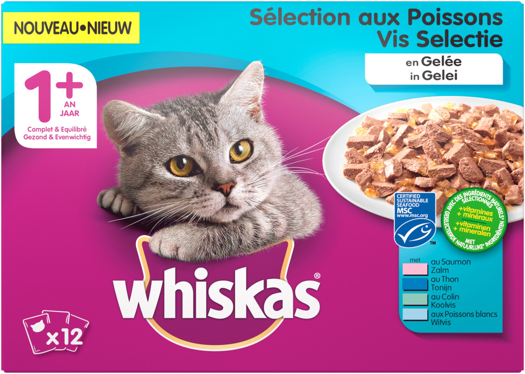 Whiskas kattenvoer Adult Vis in Gelei <br>12 x 100 gr