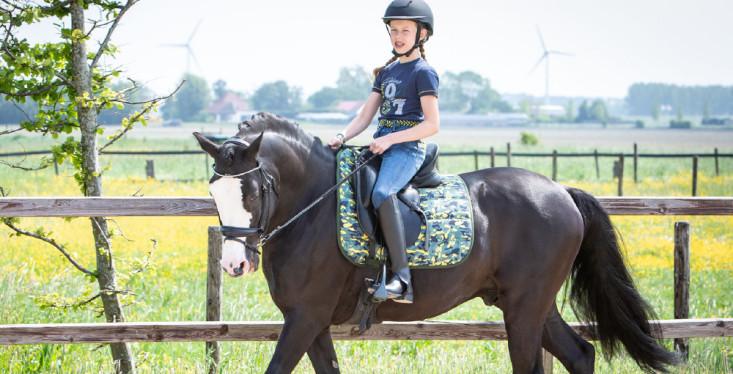 Passie voor pony's