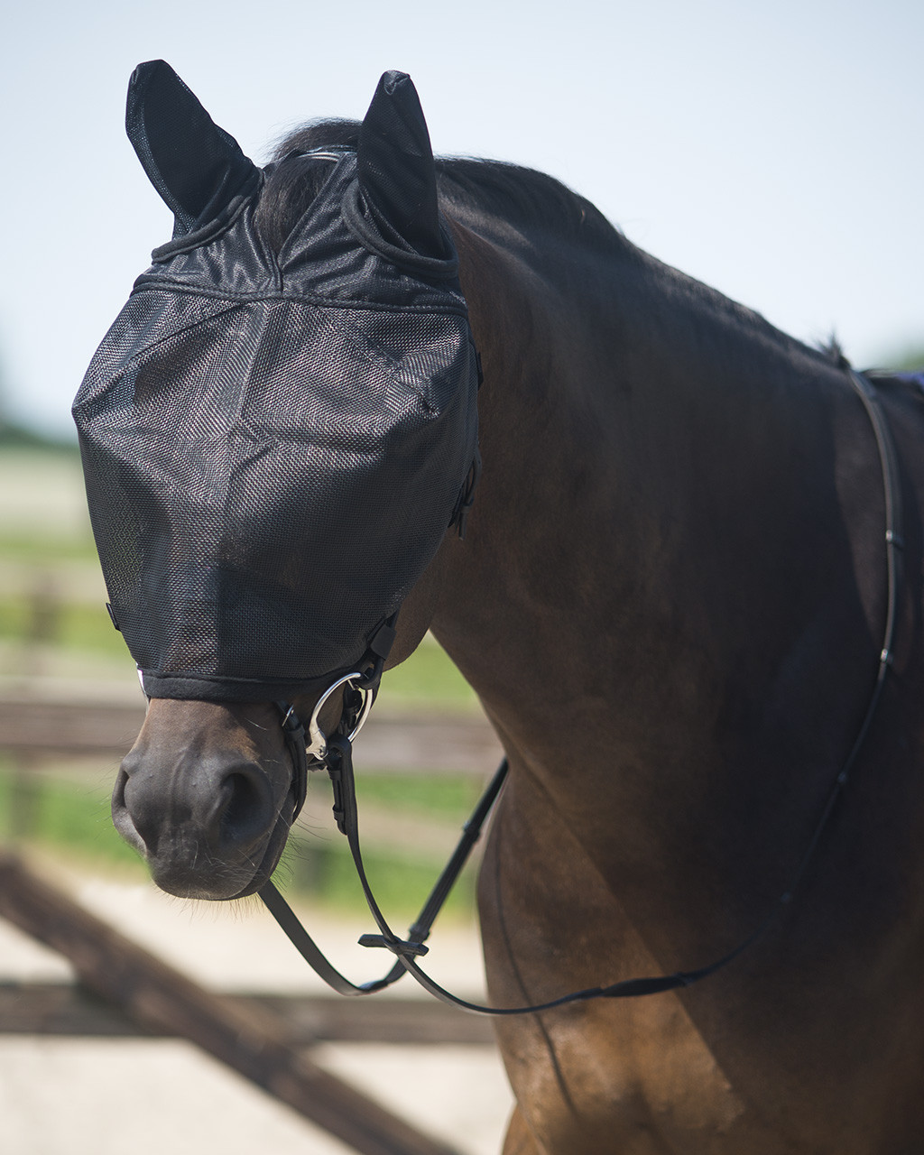 QHP rij vliegenmasker met oren zwart