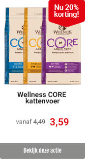 Wellness Core 20% korting