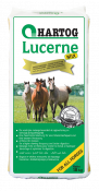 lucerne-mix-1.png