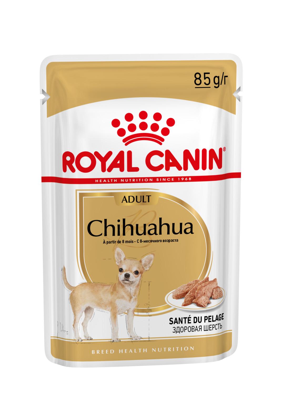 Royal Canin hondenvoer Chihuahua Adult 12 x 85 gr
