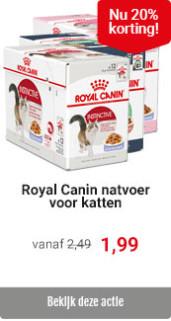 Royal Canin kattenvoer met 20% korting
