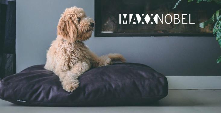 MaxxNobel manden en -kussens
