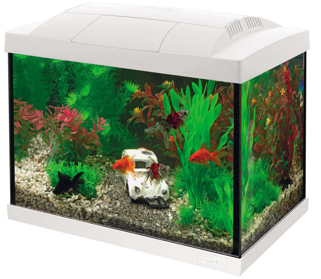 SuperFish aquarium Start 20 Goldfish kit wit