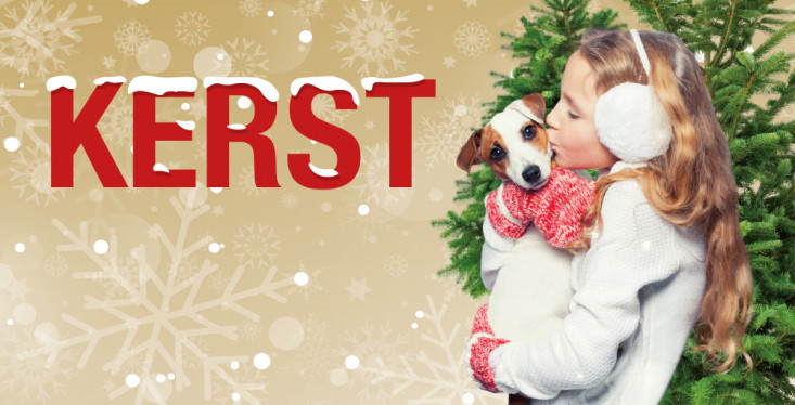 14 december: Kerst in de winkel