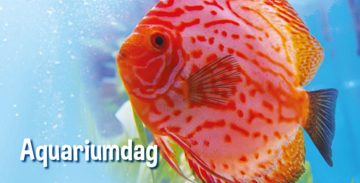 1 februari: Aquariumdag