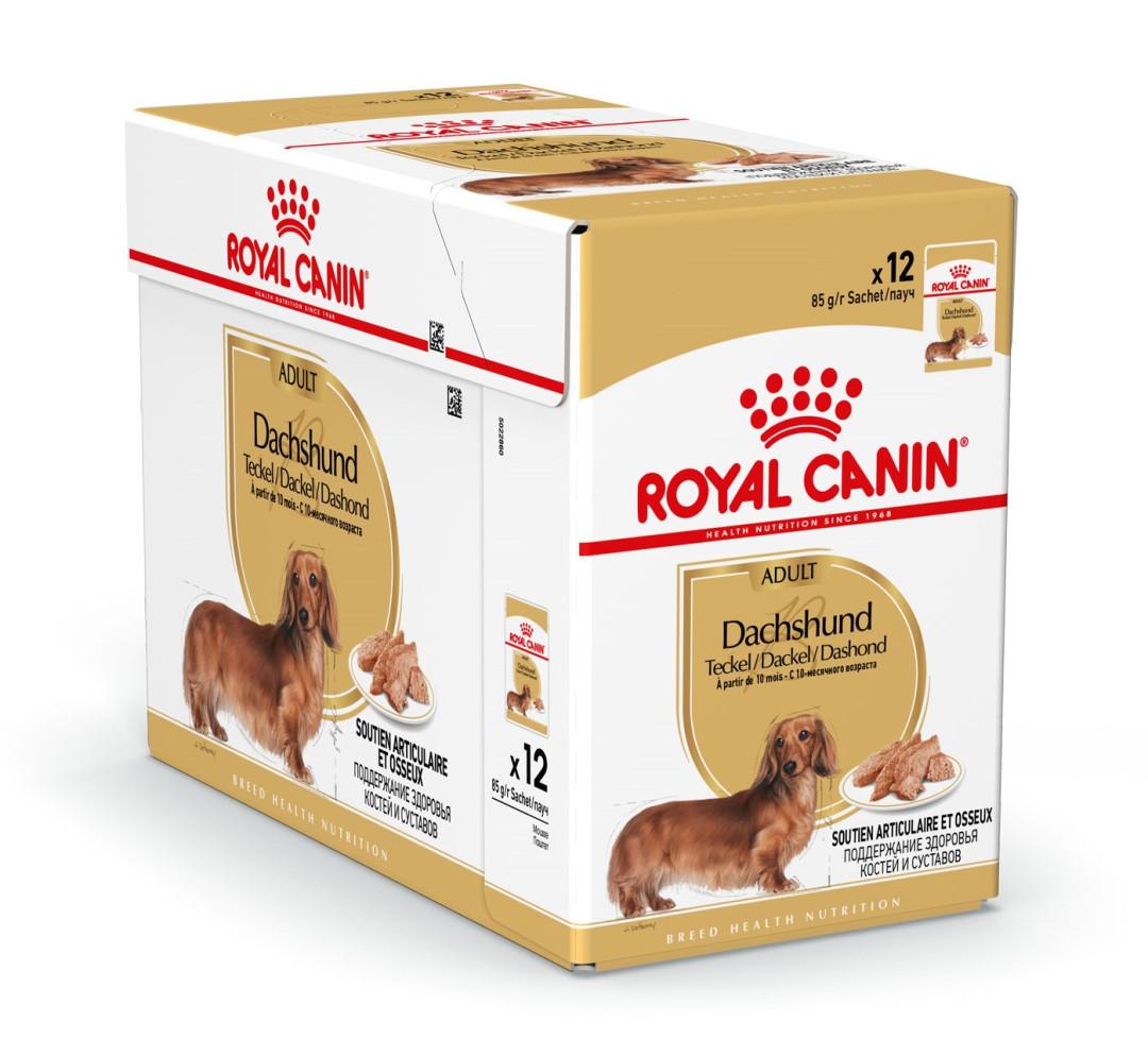 Royal Canin hondenvoer Dachs-hund Adult 12 x 85 gr