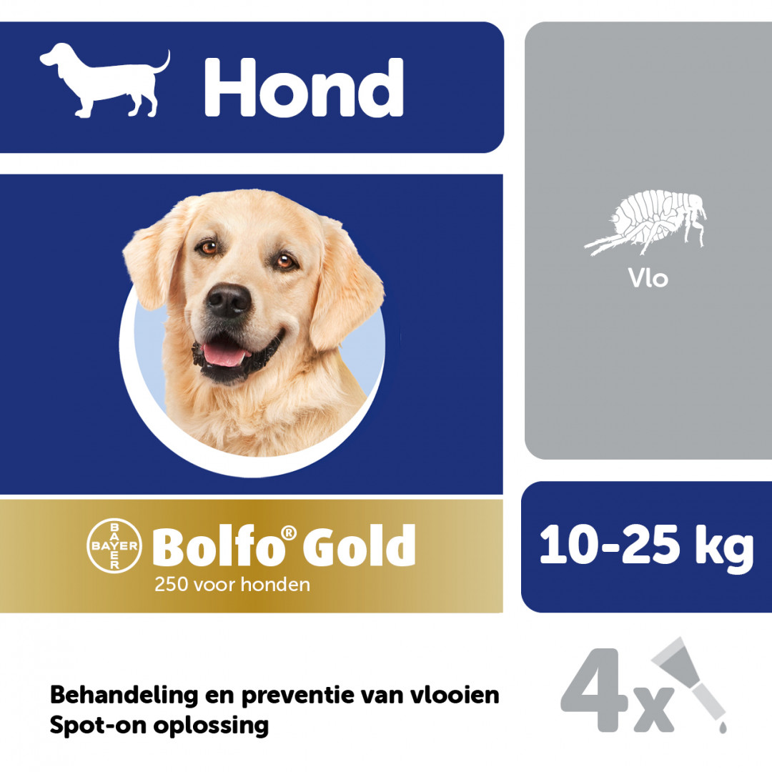 Bolfo Gold 250 hond <br>4 pipetten
