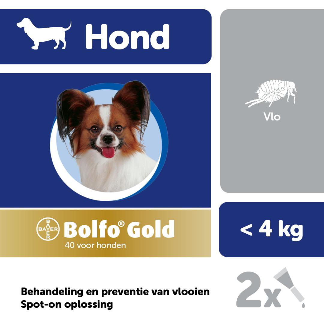 Bolfo Gold 40 hond <br>2 pipetten