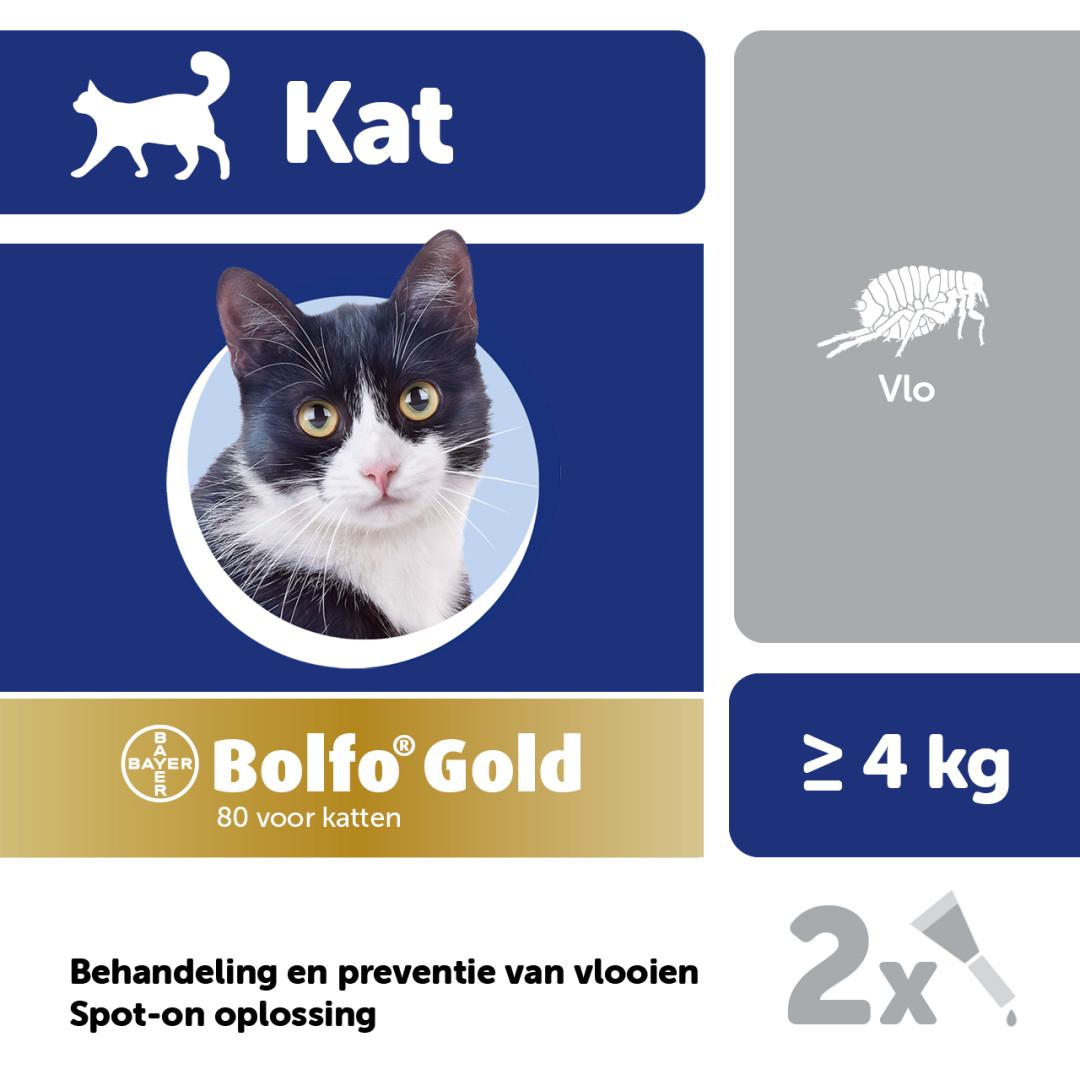 Bolfo Gold 80 kat <br>2 pipetten