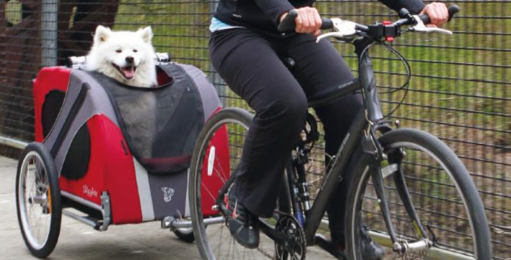 Veilig vervoeren