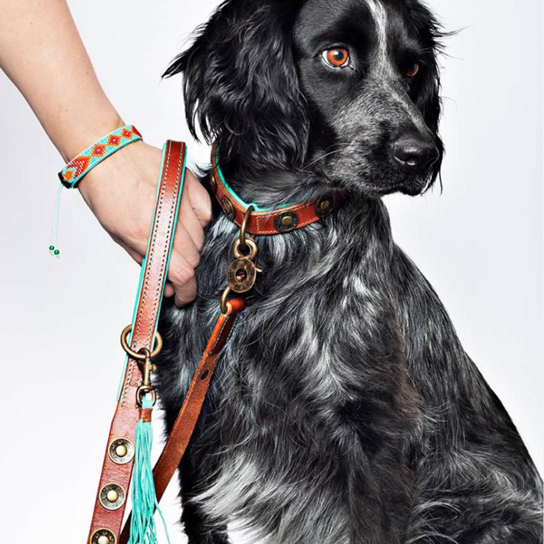 Dog with a Mission hondenlijn Joe