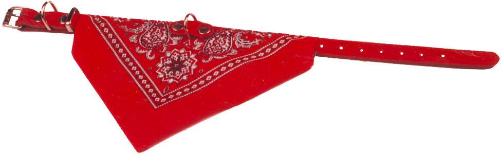Halsband met zakdoek rood