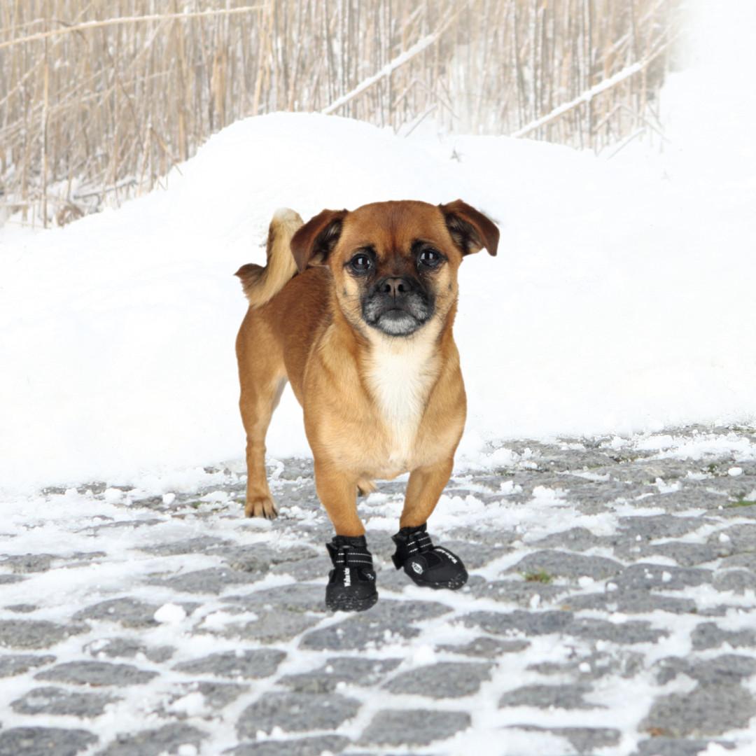 TRIXIE hondenschoen Walker Active zwart