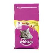 whiskas-1plus-met-Kip-3.8-kg-rvv.jpg