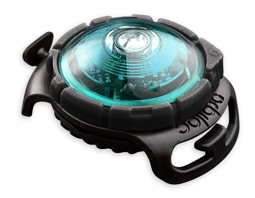 Orbiloc Safety Light Dog Dual turquoise