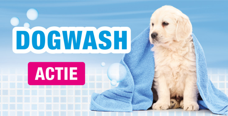 Dogwash, nu slechts € 5