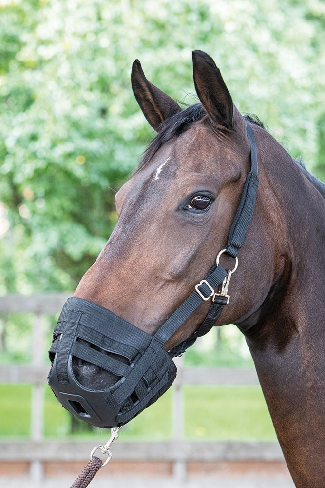 Harry's Horse Graasmasker Muzzle Air