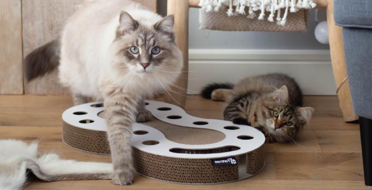 Speelplezier voor je kat
