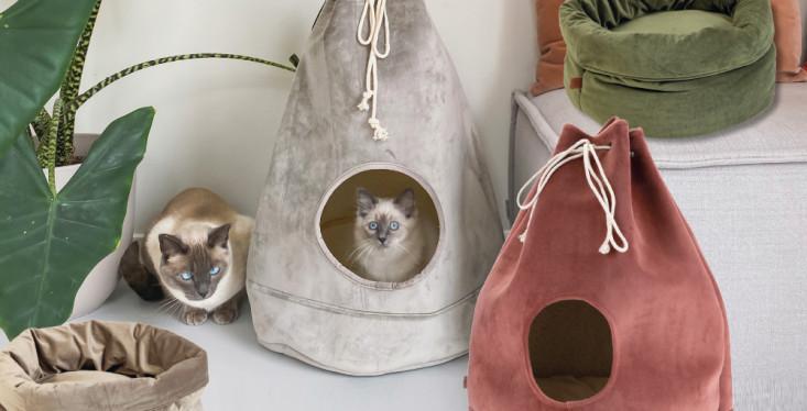 Juweeltjes voor je kat
