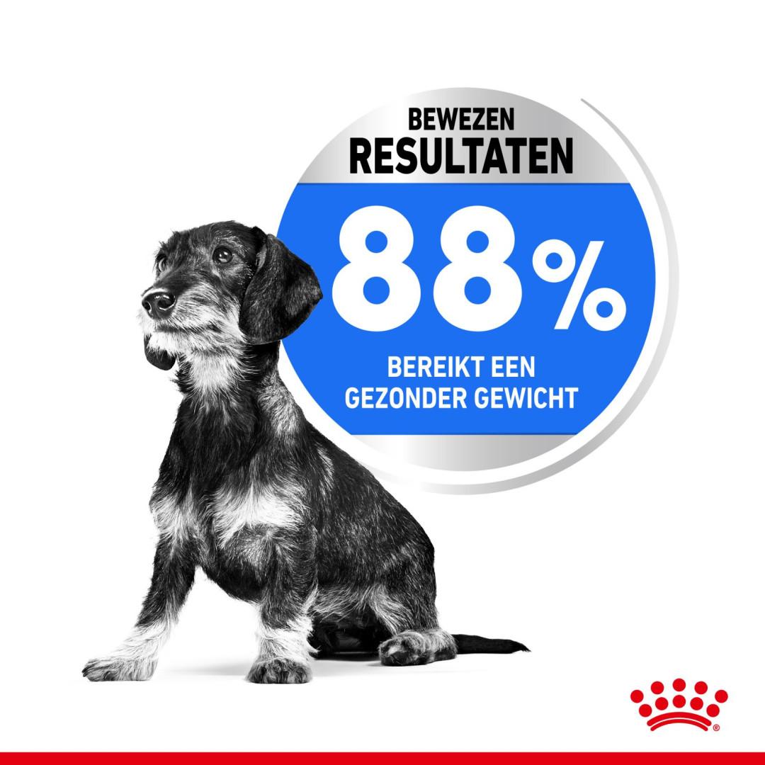 Royal Canin hondenvoer Light Weight Care Mini 3 kg