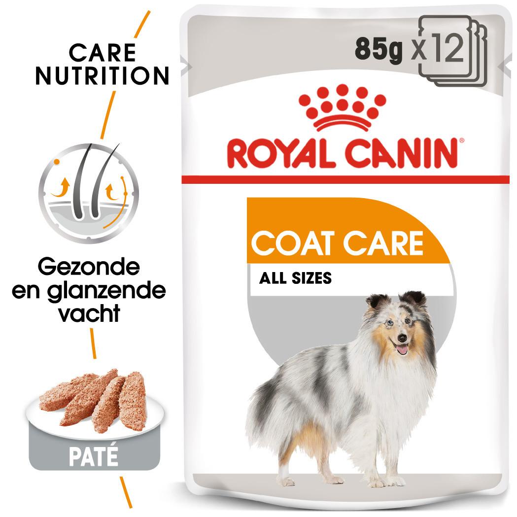 Royal Canin hondenvoer Coat Care Wet 12 x 85 gr
