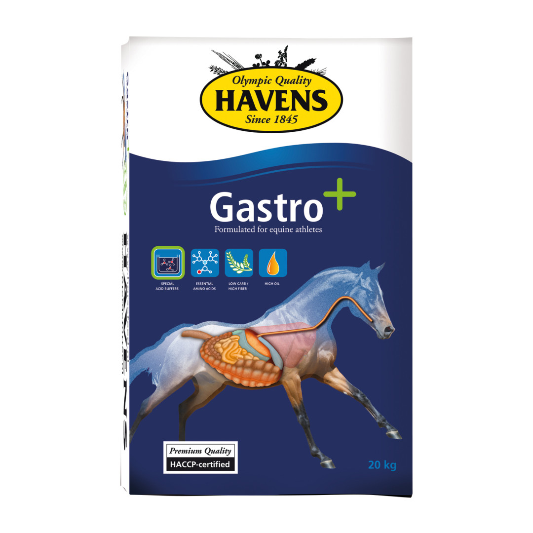 Havens Gastro+ 20 kg