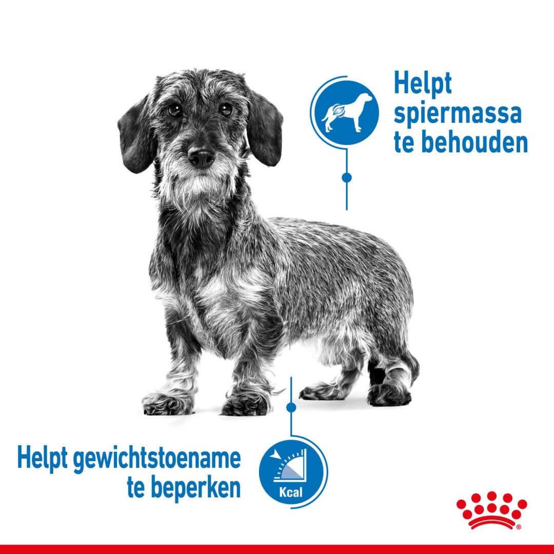 Royal Canin hondenvoer Light Weight Care Mini 8 kg