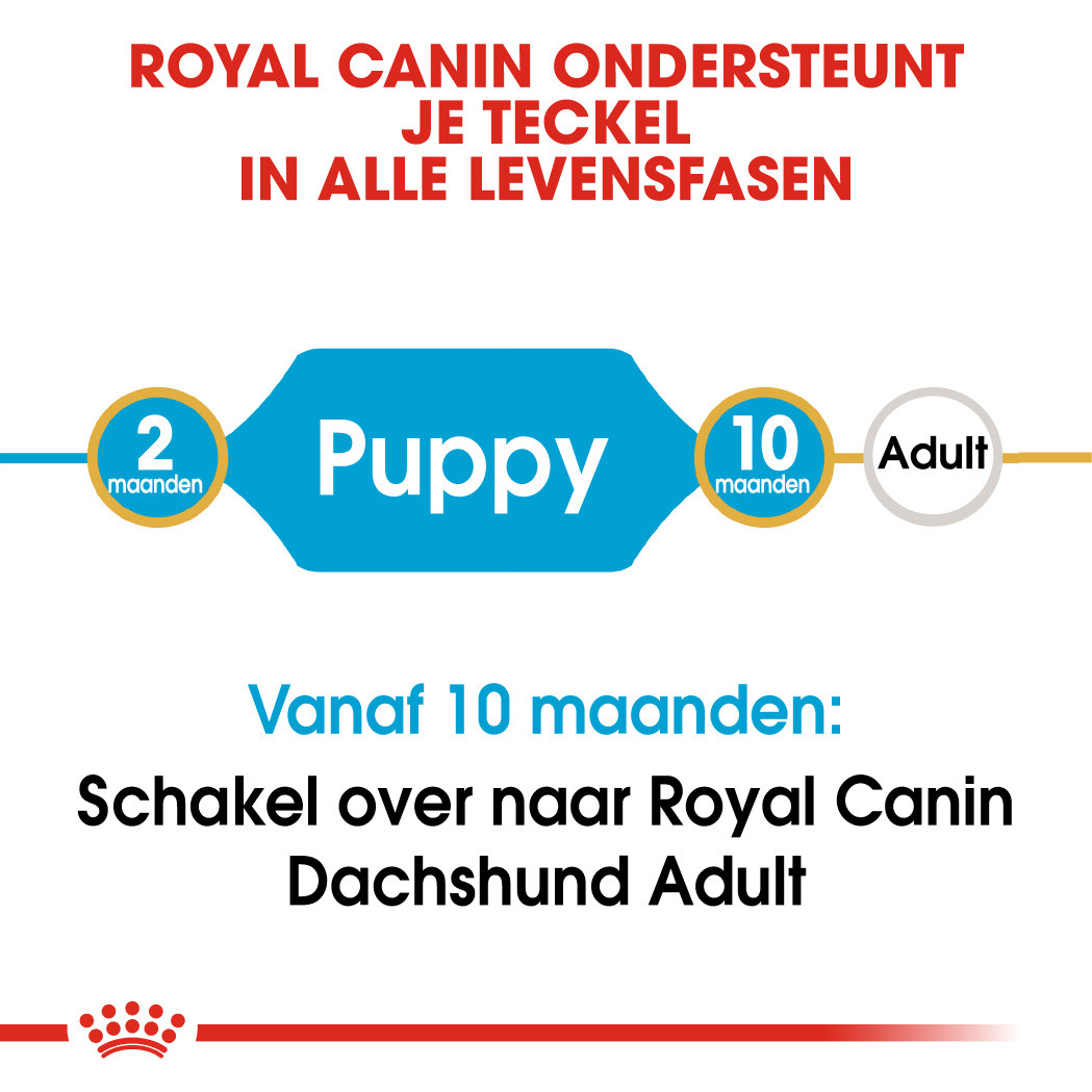 Royal Canin hondenvoer Dachshund Puppy 1,5 kg