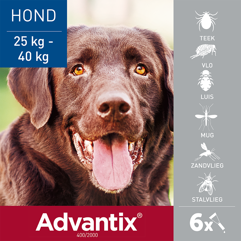 Advantix 400 6 pipetten