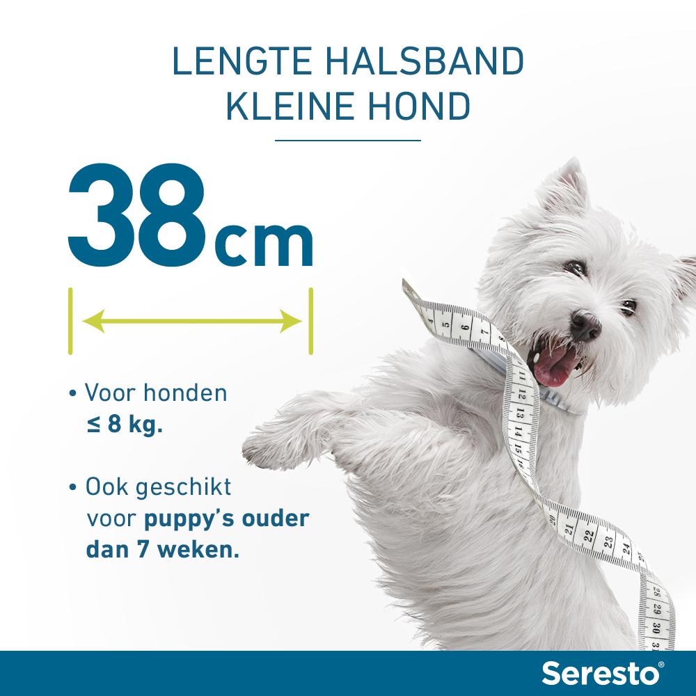 Seresto band voor kleine honden