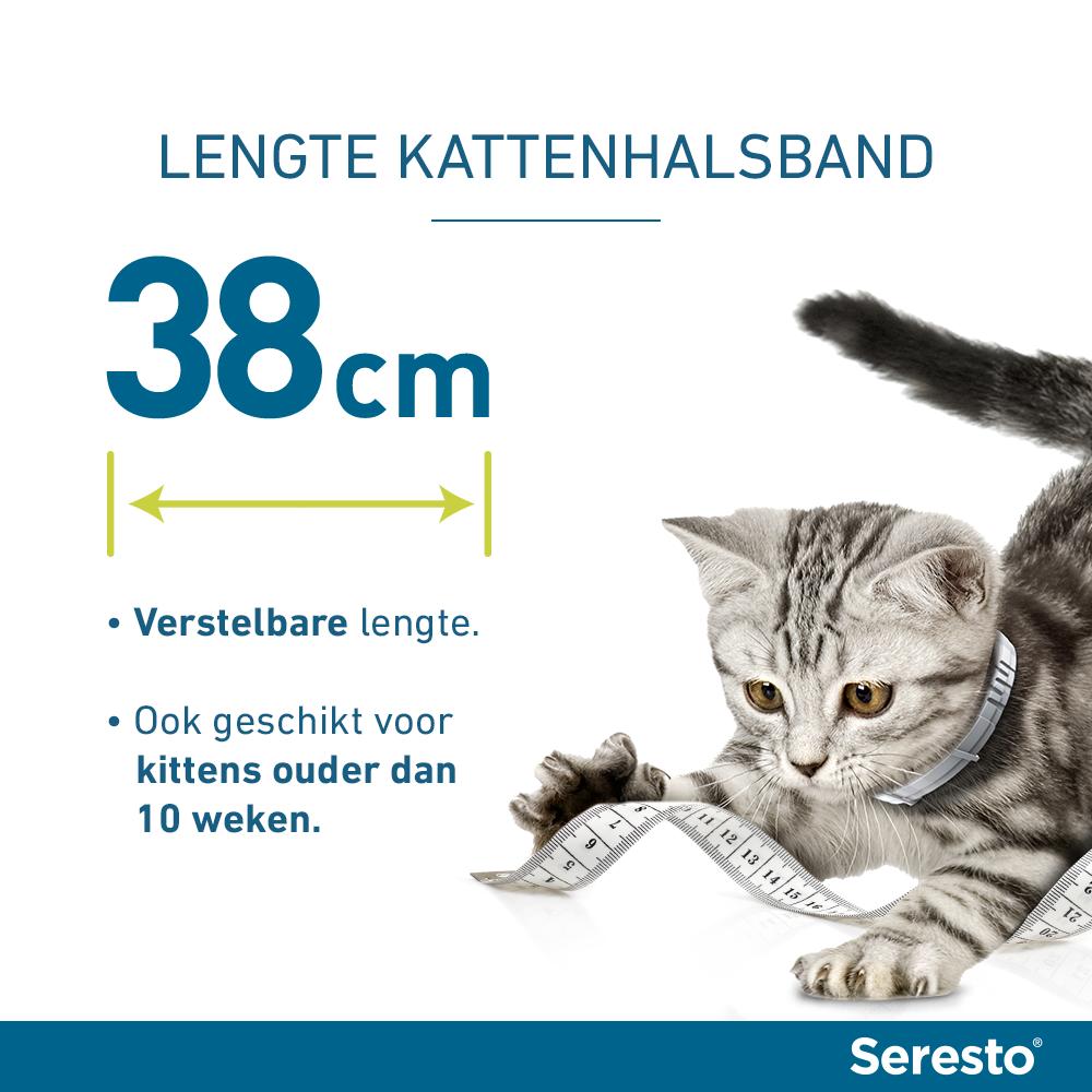 Seresto band voor katten