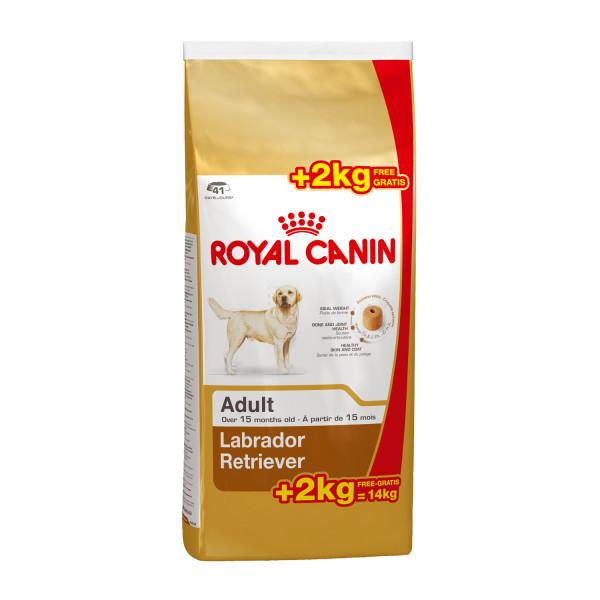 12 + 2 kg Royal Canin hondenvoer Labrador Retriever Adult