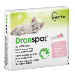 5.4.1.2.7_3.1.2.7 Dronspot Small Cat.jpg