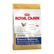royal-canin-french-bulldog-junior.jpg